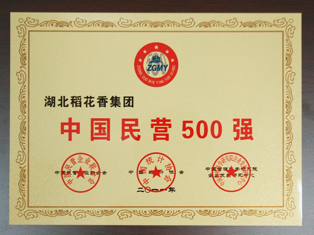 2011年中国民营企业500强