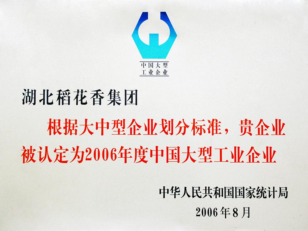 """2006年8月,稻英亚体育电竞集团被国家统计局认定为""""中国大型工业企业"""""""